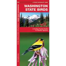 Birding, Washington Birds