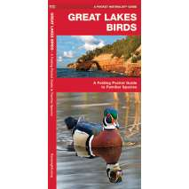 Bird Identification Guides, Great Lakes Birds