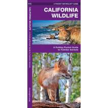 Reptile & Mammal Identification Guides, California Wildlife