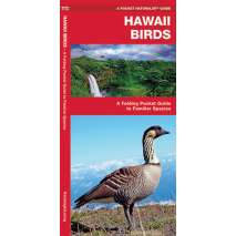 Bird Identification Guides, Hawaii Birds
