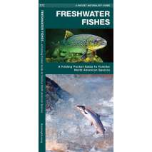 Fish & Sealife Identification Guides, Freshwater Fishes