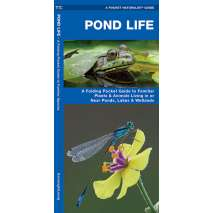 Fish & Sealife Identification Guides, Pond Life