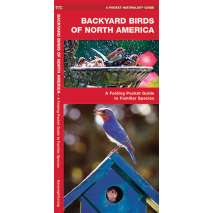Bird Identification Guides, Backyard Birds of North America