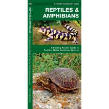 Reptile & Mammal Identification Guides, Reptiles & Amphibians