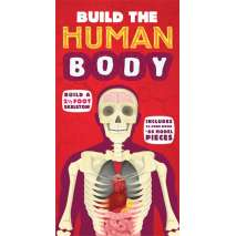Models & Puzzles, Build the Human Body