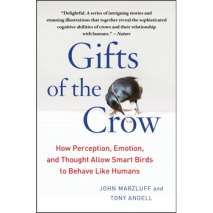Birding, Gifts of the Crow: How Perception, Emotion, and Thought Allow Smart Birds to Behave Like Humans