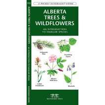 Tree, Plant & Flower Identification Guides :Alberta Trees & Wildflowers