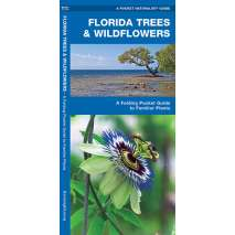 Tree, Plant & Flower Identification Guides, Florida Trees & Wildflowers