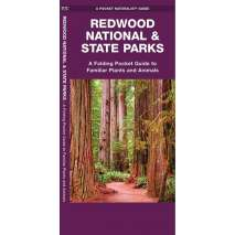 California, Redwood National & State Parks