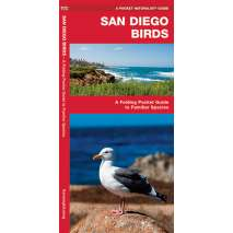 Bird Identification Guides, San Diego Birds