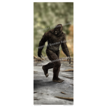 Bigfoot Novelty Gifts :Sasquatch Poster
