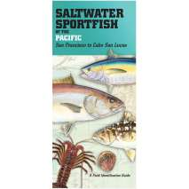Aquarium Gift Shops, Saltwater Sport Fish of the Pacific: San Francisco to Cabo San Lucas FIELD GUIDE