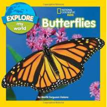Butterflies, Bugs & Spiders, Explore My World Butterflies
