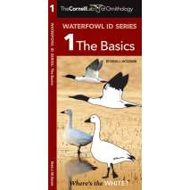 Bird Identification Guides, Cornell Lab of Ornithology Waterfowl ID: #1 The Basics