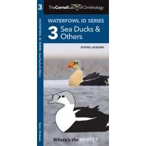 Bird Identification Guides, Cornell Lab of Ornithology Waterfowl ID: #3 Sea Ducks & Others