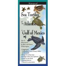 Books for Aquarium Gift Shops :Sea Turtles of the Atlantic & Gulf of Mexico