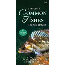 Fish & Sealife Identification Guides, A Field Guide to Common Fishes of the Pacific Northwest