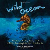 Fish, Sealife, Aquatic Creatures, Wild Ocean: Sharks, Whales, Rays, and Other Endangered Sea Creatures