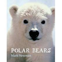Polar Animals, Polar Bears