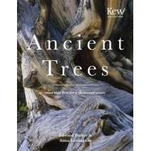 Natural History, Ancient Trees: Trees That Live for a Thousand Years
