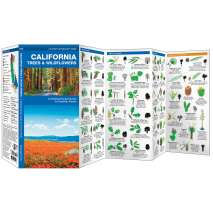 Tree, Plant & Flower Identification Guides :California Trees & Wildflowers