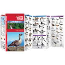 Bird Identification Guides :Hawaii Birds