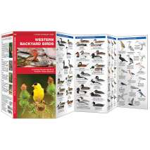 Bird Identification Guides :Western Backyard Birds