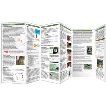 Other Field Guides :Basic & Primitive Navigation