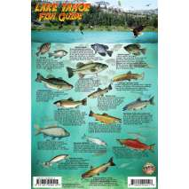 Fish & Sealife Identification Guides, Lake Tahoe Map & Fish Guide