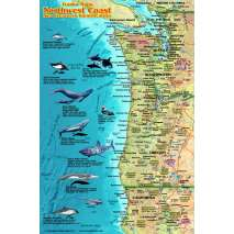 Fish & Sealife Identification Guides, Pacific Northwest Coast Sea Creatures