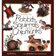Children's Outdoors, Take-Along Guide: Rabbits, Squirrels and Chipmunks