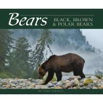 Bears, Bears: Black, Brown & Polar Bears
