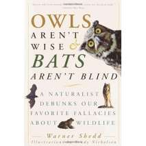 Wildlife & Zoology, Owls Aren't Wise & Bats Aren't Blind: A Naturalist Debunks Our Favorite Fallacies About Wildlife