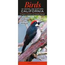 Bird Identification Guides, Birds of Central & Northern California