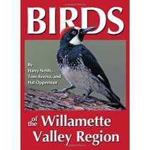Bird Identification Guides, Birds of the Willamette Valley Region