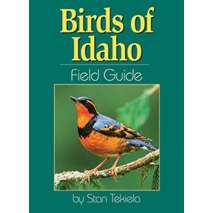 Bird Identification Guides, Birds of Idaho Field Guide