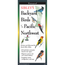 Bird Identification Guides, Sibley's Backyard Birds of Pacific Northwest