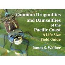 Pacific Northwest Field Guides, Common Dragonflies and Damselflies of the Pacific Coast: A Life Size Field Guide