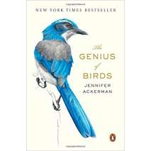 Wildlife & Zoology, The Genius of Birds