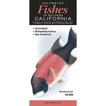 Fish & Sealife Identification Guides, Saltwater Fishes of Southern California : A Guide to Inshore and Offshore Species