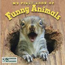 Board Books, My First Book of Funny Animals