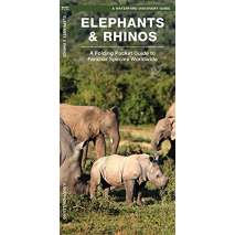 Reptile & Mammal Identification Guides, Elephants & Rhinos: A Folding Pocket Guide to the Status of Familiar Species