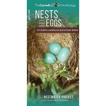 Bird Identification Guides, Nests and Eggs of North American Backyard Birds