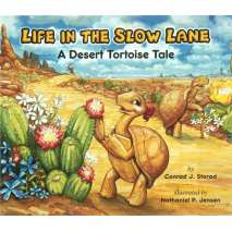 Dinosaurs & Reptiles, Life in the Slow Lane; A Desert Tortoise Tale