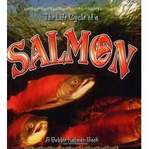 Fish, Sealife, Aquatic Creatures, The Life Cycle of a: Salmon