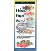 Pacific Northwest Field Guides :Fishes of Puget Sound