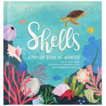 Pop-Up Books, Shells: A Pop-Up Book of Wonder