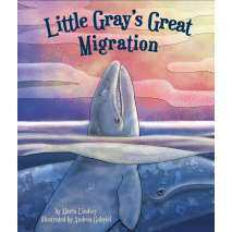 Marine Mammals, Little Gray's Great Migration