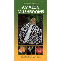 Mushroom Identification Guides :A Field Guide to Tropical Amazon Mushrooms