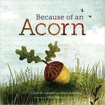 Environment & Nature :Because of an Acorn